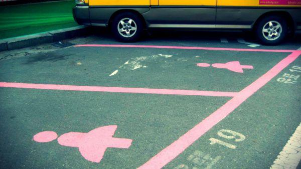 Opact contro le quote rosa - Col foglio rosa posso portare passeggeri ...